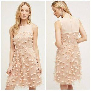 Anthropologie Eva Franco Pink Flutter Fleur Dress
